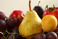 Autumnal fruits Stock Photo