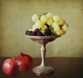 Autumnal fruits Stock Photos