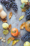 Autumnal fruits  Stock Photography