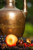 Autumnal fruits in front of a copper pot Stock Photos