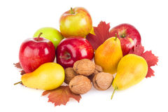 Autumnal fruits still life Royalty Free Stock Photos
