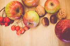 Autumnal fruits still life Royalty Free Stock Image