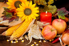 Autumnal fruits and vegetables. royalty free stock photography