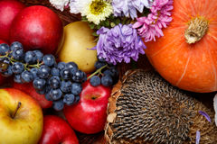 Autumnal fruits and vegetables Stock Image