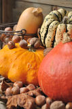 Autumnal fruits and vegetables Royalty Free Stock Photo
