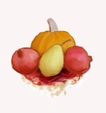 Autumnal fruits Royalty Free Stock Images