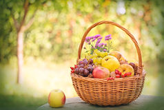 Autumnal fruits in wicker basket Stock Photos