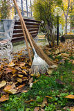 Autumnal garden work. To rake leaves from a lawn with rake and broom Royalty Free Stock Images