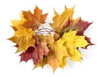Autumnal garland Stock Photos