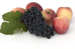 Autumnal gather. Bunch of grapes and apples on white royalty free stock image