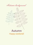 Autumnal greeting card with leave vector Stock Photography