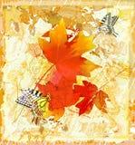 Autumnal  grunge background Royalty Free Stock Photo