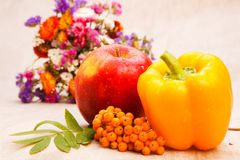 Autumnal harvest Royalty Free Stock Images