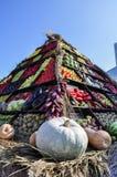 Autumnal harvest Stock Photos