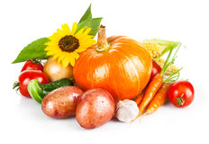 Autumnal harvest fresh vegetables Stock Photography