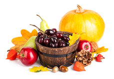 Autumnal harvest fruit and vegetables Royalty Free Stock Images
