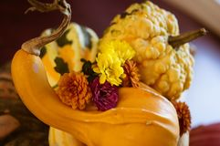 Happy Thanksgiving Centerpiece Decoration with Mums. Fall Garden harvest table centerpiece with entwined gourds and pumpkin stems and yellow orange seasonal stock images