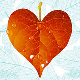Autumnal heart and seamless leaf background Stock Photography