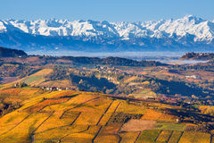 Autumnal hills and snowy mountains in Piedmont, Italy. Stock Photography