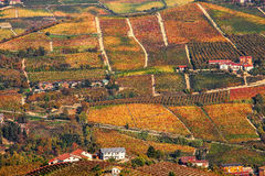 Autumnal hills and vineyards in Piedmont, Italy. Royalty Free Stock Image