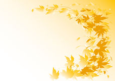 Autumnal hop background. An abstract autumn composition based on hop leaves Stock Photography