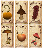 Autumnal labels. A collection of vintage postcards or labels Royalty Free Stock Photos
