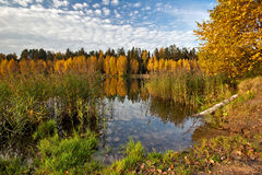 Autumnal lake Stock Photography