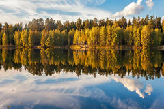 Autumnal lake near the forest Royalty Free Stock Image