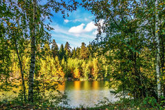 Autumnal lake Royalty Free Stock Photography