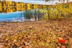 Autumnal lake Royalty Free Stock Images