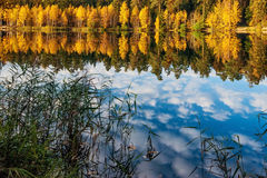 Autumnal lake Stock Images