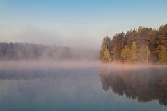Autumnal lake near the forest Stock Images