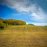 Autumnal landscape Royalty Free Stock Images