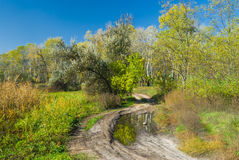 Autumnal landscape in central Ukraine Stock Image