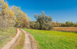 Autumnal landscape in central Ukraine Stock Photography