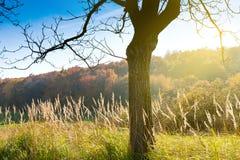 Autumnal landscape, Czech Karst, Czech Republic Royalty Free Stock Image