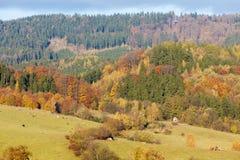 Autumnal landscape. In Czech Republic Stock Image
