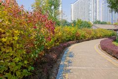 Autumnal park. The autumnal landscape of Fen River Park in Taiyuan, Shanxi, China royalty free stock photography