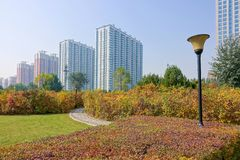 Autumnal park. The autumnal landscape of Fenhe Park in Taiyuan, Shanxi, China stock photo