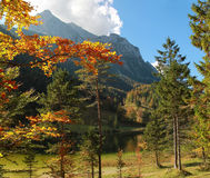Autumnal landscape and fishing lake ferchensee Royalty Free Stock Photo