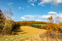 Autumnal landscape with forest, pasture and blue sky Stock Images