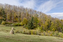 Autumnal landscape. Of the idylic hills in the village Holbav, Brasov County, Romania Stock Photo