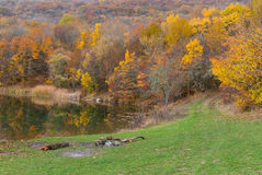 Autumnal landscape on the lakeside Stock Photography