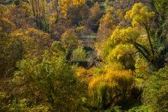 Autumnal landscape Stock Photo