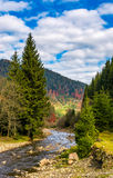 Autumnal landscape with river in spruce forest. Autumnal landscape with narrow river in spruce forest. beautiful nature scenery mountainous area under blue sky Stock Images