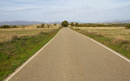 Autumnal Landscape with Road Royalty Free Stock Photo