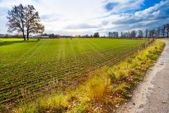 Autumnal landscape, South Bohemia, Czech Republic Royalty Free Stock Photos