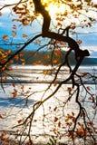 Autumnal landscape, South Bohemia, Czech Republic Stock Photos