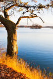 Autumnal landscape, South Bohemia, Czech Republic Royalty Free Stock Image