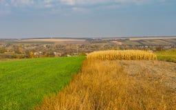 Autumnal landscape in village Dovzhik, Ukraine Royalty Free Stock Image